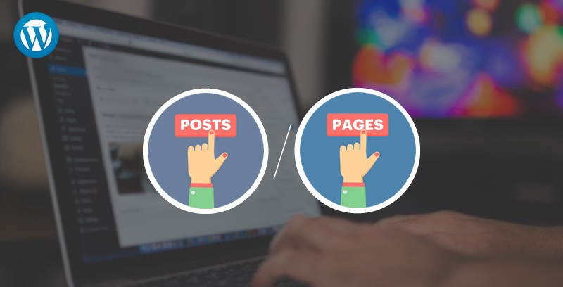 Create Multiple Pages or Posts in WordPress